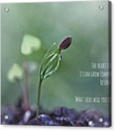 The Heart Is Like A Garden Acrylic Print