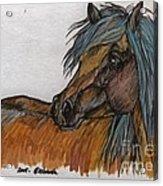 The Heavy Horse Acrylic Print