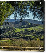 The Hills Acrylic Print