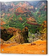 The Hills Have Eyes Acrylic Print