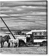 The Horses And The Welding Truck Acrylic Print