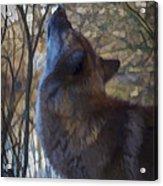 The Howl Acrylic Print