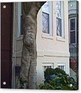 The Human Tree Acrylic Print