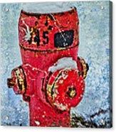 The Hydrant Acrylic Print