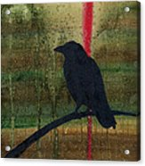 The Impossibility Of Crows Acrylic Print