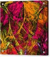 The Jester 20130510 Acrylic Print