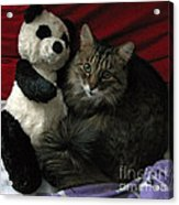 The King Kitty And Panda 01 Acrylic Print