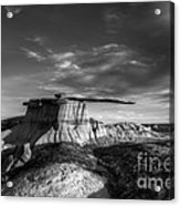 The King Of Wings Monochrome Acrylic Print