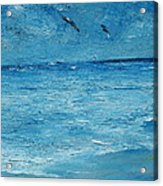 The Kite Surfers Acrylic Print