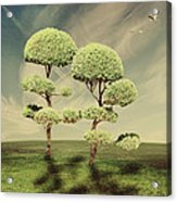 The Land Of The Lollipop Trees Acrylic Print