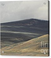 The Land Scape Acrylic Print