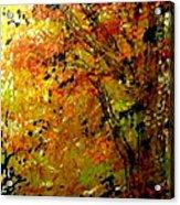 The Last Days Of Autumn Acrylic Print