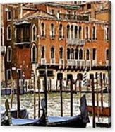 The Last Pigeon In Venice Acrylic Print