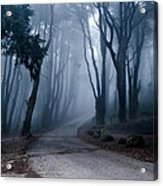 The Last Road Acrylic Print