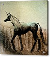The Last Unicorn Acrylic Print by Bob Orsillo