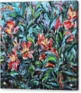 The Late Bloomers Acrylic Print by Xueling Zou
