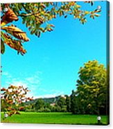The Leaves Are Turning Golden... Acrylic Print