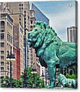 The Lions Of Chicago Acrylic Print
