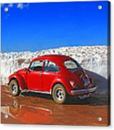 The Little Bug That Could Acrylic Print