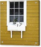 The Little Window Acrylic Print