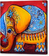 The Littlest Elephant Acrylic Print