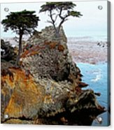 The Lone Cypress - Pebble Beach Acrylic Print by Glenn McCarthy Art and Photography
