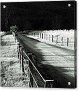 The Lone Photographer Acrylic Print