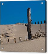 The Lonely Driftwood Acrylic Print