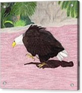 The Lonely Eagle Acrylic Print by Bav Patel
