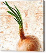 The Lonely Onion Acrylic Print