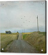The Long Road Home Acrylic Print