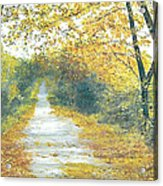The Long Road Home - Oil Acrylic Print