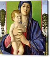 The Madonna Of The Trees Acrylic Print by Giovanni Bellini