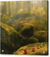 The Magic Forest Acrylic Print