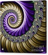 The Magic Shell Acrylic Print