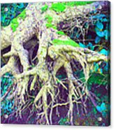 The Magical Hobbit Tree Acrylic Print