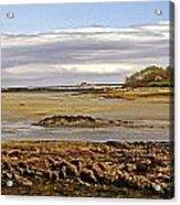 The Maine Coast Acrylic Print by Skip Willits