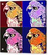 The Many Faces Of Taz Acrylic Print