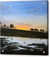 The March Of The Elephants Acrylic Print by Pilar  Martinez-Byrne