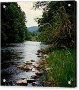 The Mckenzie River Acrylic Print