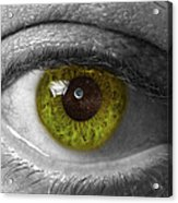 The Minds Eye Black And White Acrylic Print