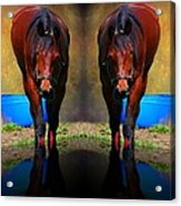 The Mirror Acrylic Print