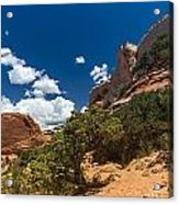 The Moab High Desert Acrylic Print