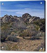 The Mojave Desert Acrylic Print