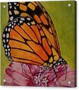 The Monarch Acrylic Print