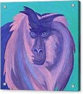 The Monkey's Mane Acrylic Print