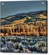 The Mountainsides Acrylic Print