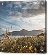 The Mourne Mountains  Acrylic Print