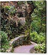 The Narrow Path Acrylic Print