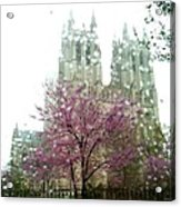 The National Cathedral  Acrylic Print